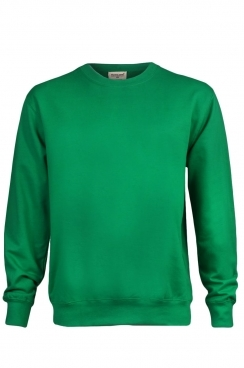 Chris Simple Green Sweatshirt
